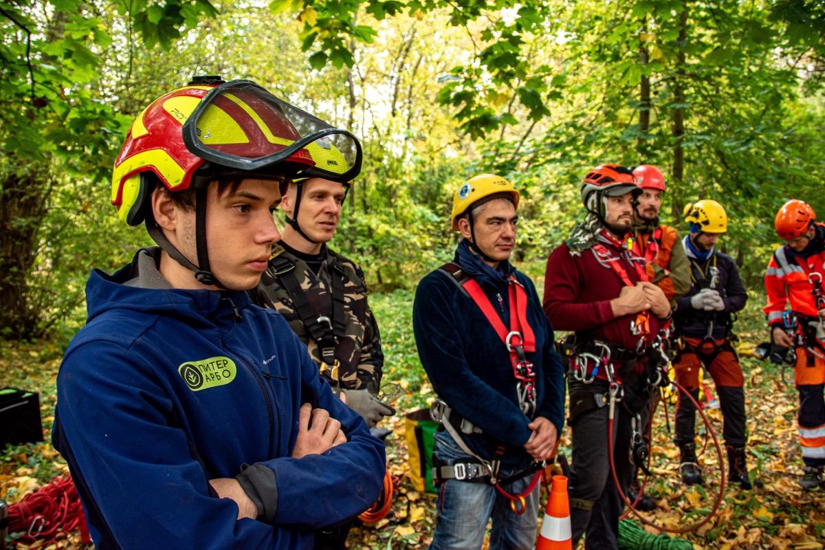 В россии специалистов по уходу за деревьями с квалификацией европейского уровня стало больше